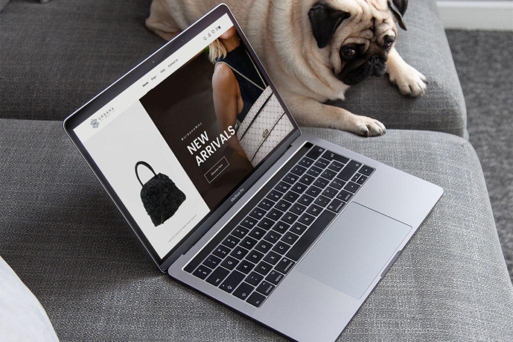 Lleva tu negocio a a la web